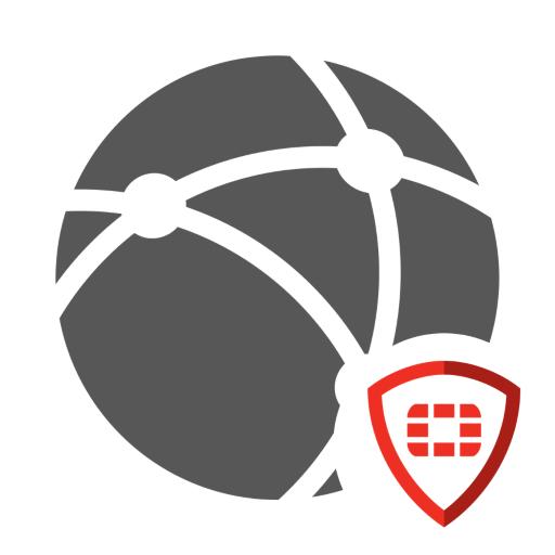 Fortinet VPN